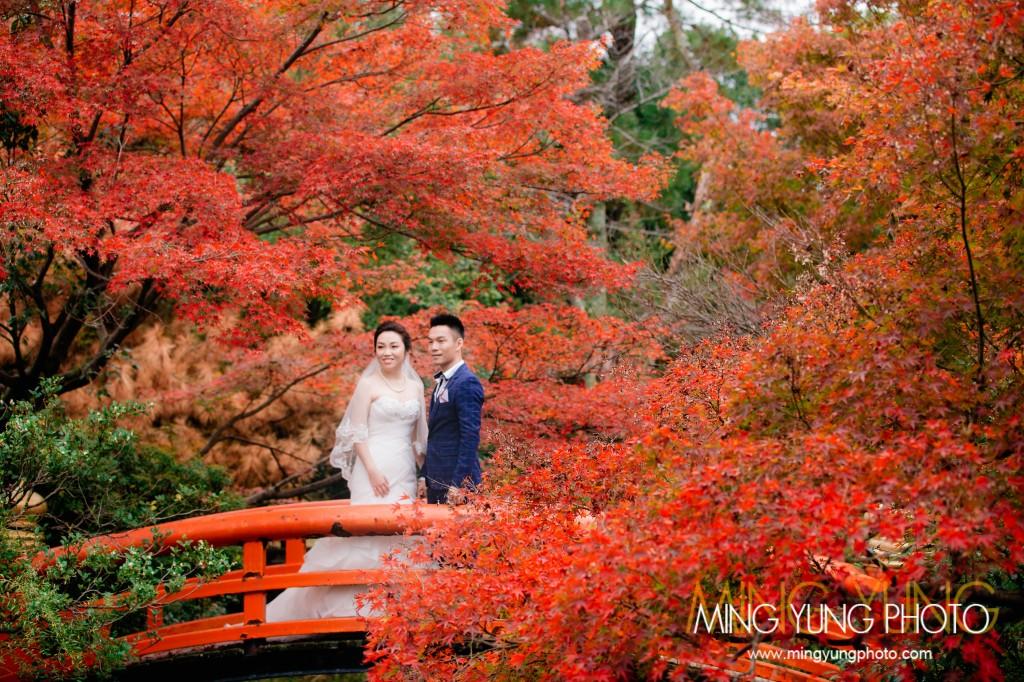 mingyungphoto-20151119-0016