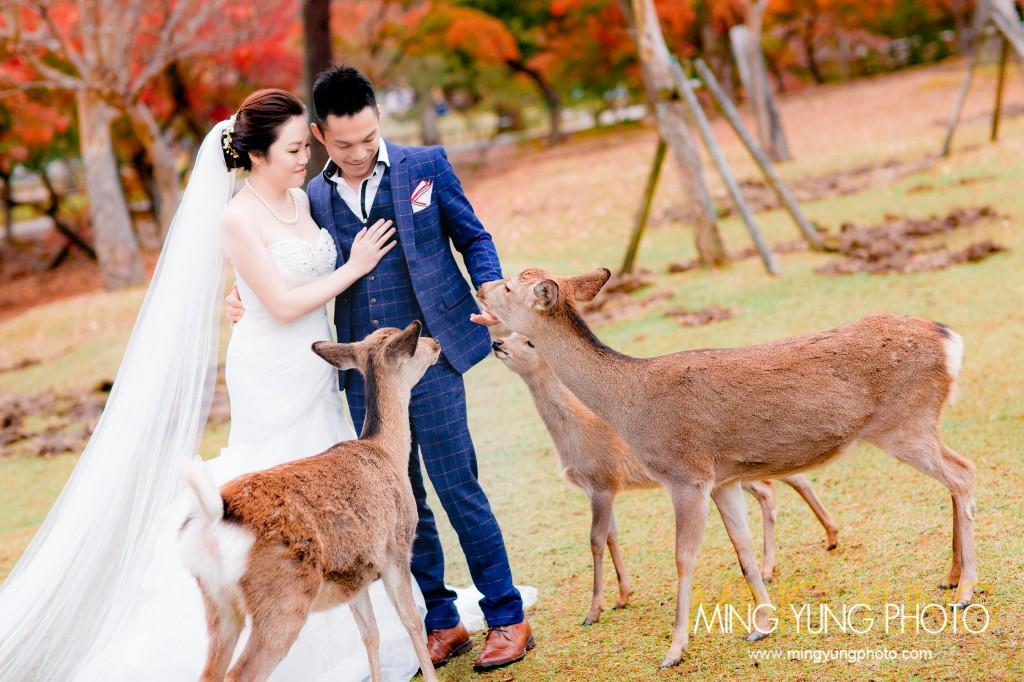 mingyungphoto-20151119-0020